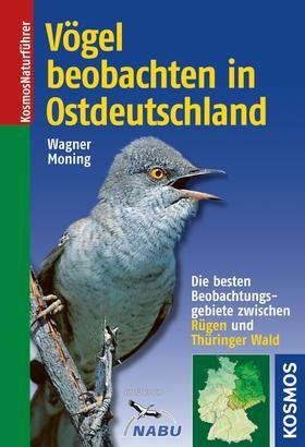 Moning-Osten-Cover