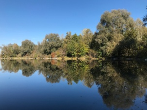 Mooswaldsee (4)
